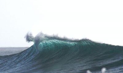 featured ola surf